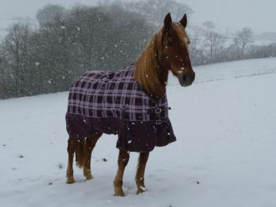Paré pour la neige !